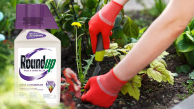 Photo of Roundup Weed & Grass Killer